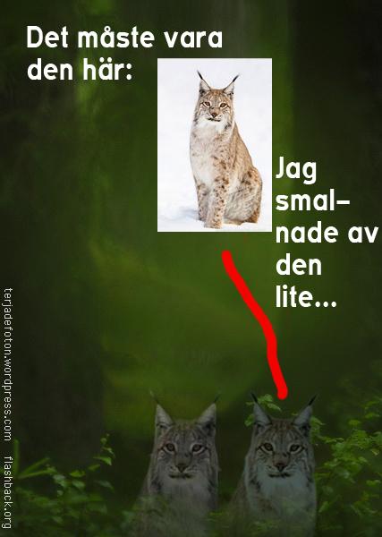 Montage av bild från Terje Hellesö och Superstock